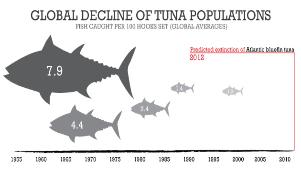 Image courtesy of Animal Life : http://animalia-life.club/openphoto.php?img=http://newenglandbluefintuna.com/wp-content/uploads/2014/01/Tuna-Decline.png